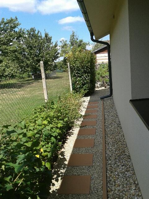 Záhrada - za domom nám vznikol priestor na výsadbu bobuľového ovocia
