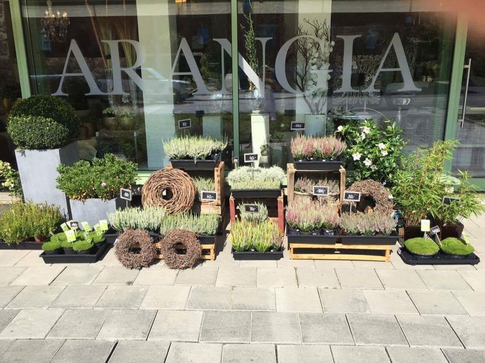 ARANGIA deco-flowers-home - Obrázek č. 31