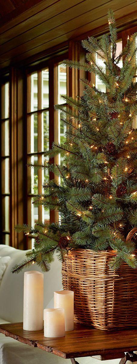 Vánoční - Obrázek č. 15