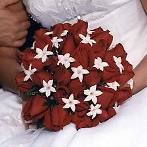 Bride PLUS - Obrázok č. 60