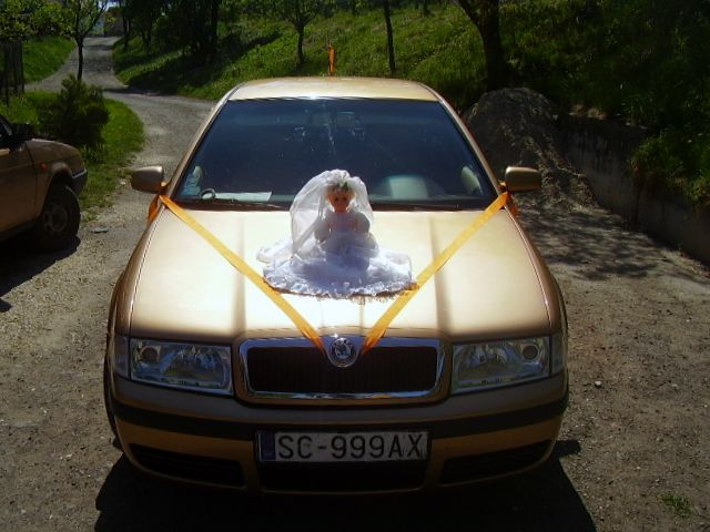 Deny{{_AND_}}Dodko Knapoví - Svadobné auto