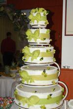 ...naša úžasná tortička...mašličky deti hneď spapali...