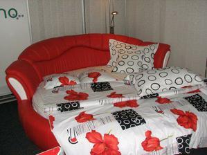 kožená postel, vypadala fakt pohodlně (zaváděcí cena 57 000,- i s matrací, povlečením, nočníma stolkama...no nekupte to!)