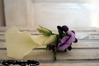 Kvetinky - Obrázok č. 37