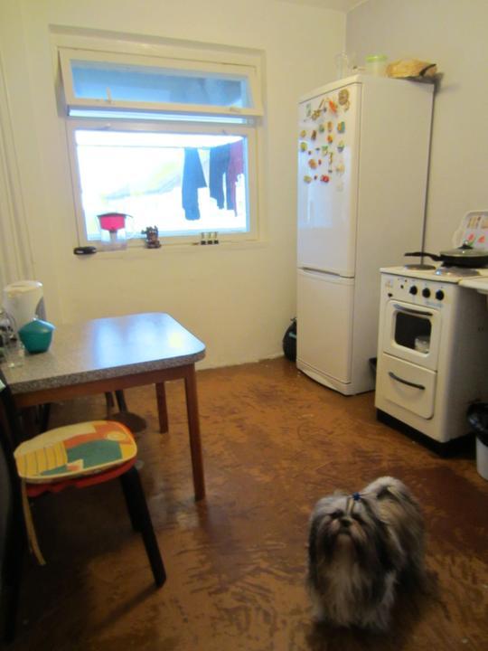 Kuchyně - NAŠE kuchyně, foceno při prohlídce bztu...jak takhle vůbec někdo mohl žít? Při nastěhování bude kuchyně prázdná, hádám, že pár měsíců budem vařit na kempingovém vařiči, protože dodání kuchyně je tu několikaměsíční záležitostí. :/