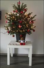 pokud máte tip na to, jak stromek udržet v kondici až do Vánoc sem s ním :)