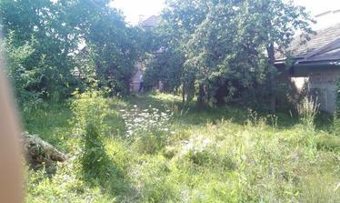 takúto záhradu sme mali zarastenú ako džungľa vyzerala