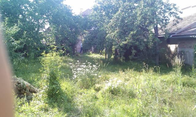 Náš domčúrik - naša radosť a starosť. - takúto záhradu sme mali zarastenú ako džungľa vyzerala