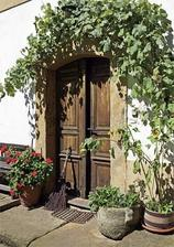 uzasne dvere. pacilo by sa mi mat taketo dvere a za nimi presklene co by cez den sluzili ako francuzske okno a na noc by sa dalo zavriet