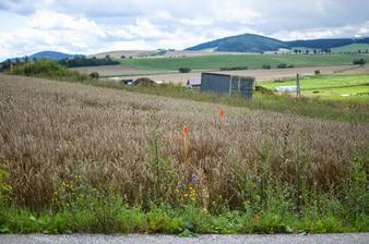 Orientačne vytýčený pozemok a rodinný dom kvôli prvotným zemným prácam