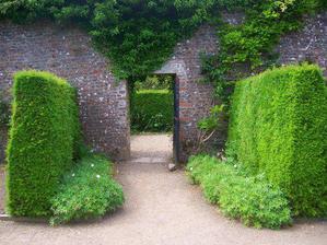 ...zahrada...