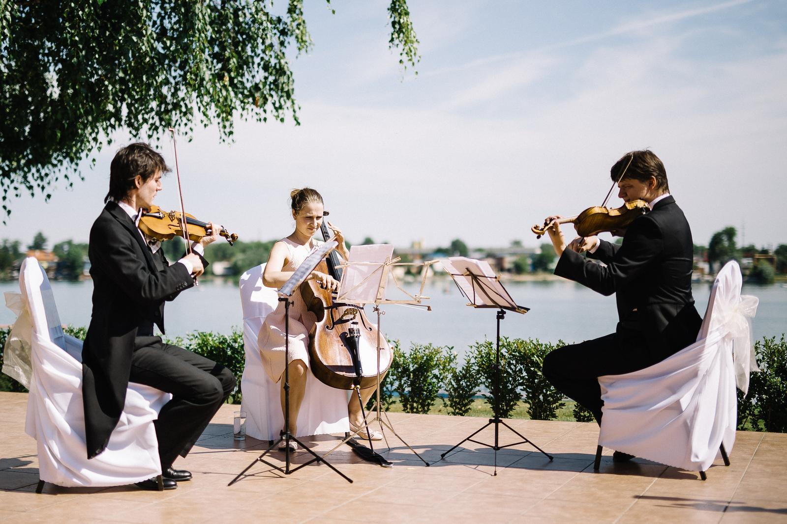 svadobne_kvarteto - Obrázok č. 4