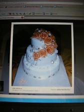 nasa objednana torticka