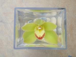 som zvedavá koľko hodín vydrží orchidea vo vode