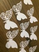 Menovky motýľ 30 ks,