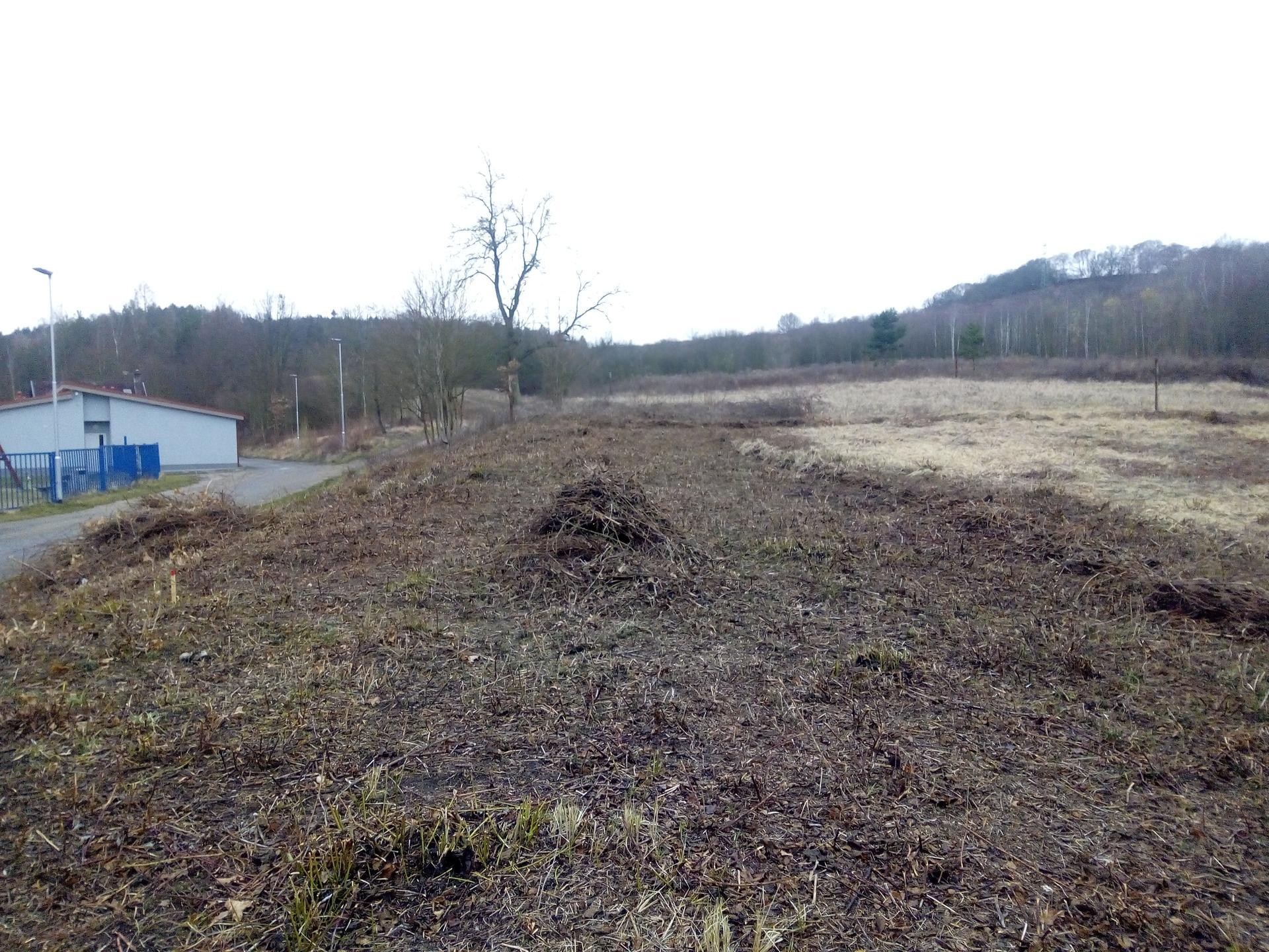 Příprava pozemku, bednění, základy, opěrka, bouda, plot - Obrázek č. 14