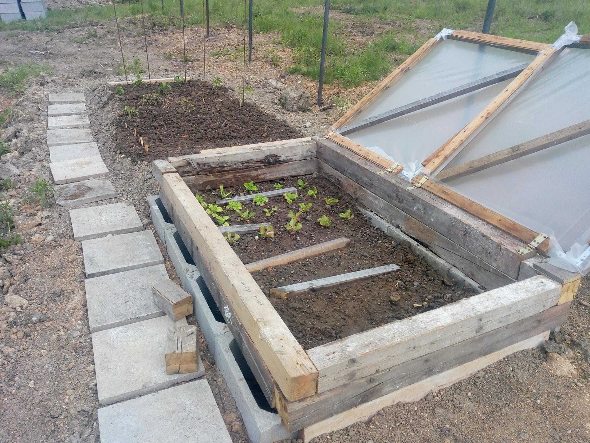 Příprava pozemku, bednění, základy, opěrka, bouda, plot - Obrázek č. 34