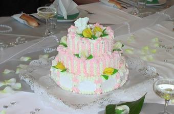 dort,který jsem obrečela-byl objednán celý bílý...