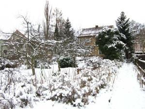 zahrada pod prvním sněhem