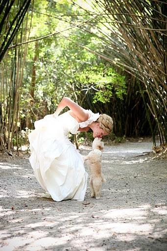 Inšpirácie na svadobné fotenie - Obrázok č. 21