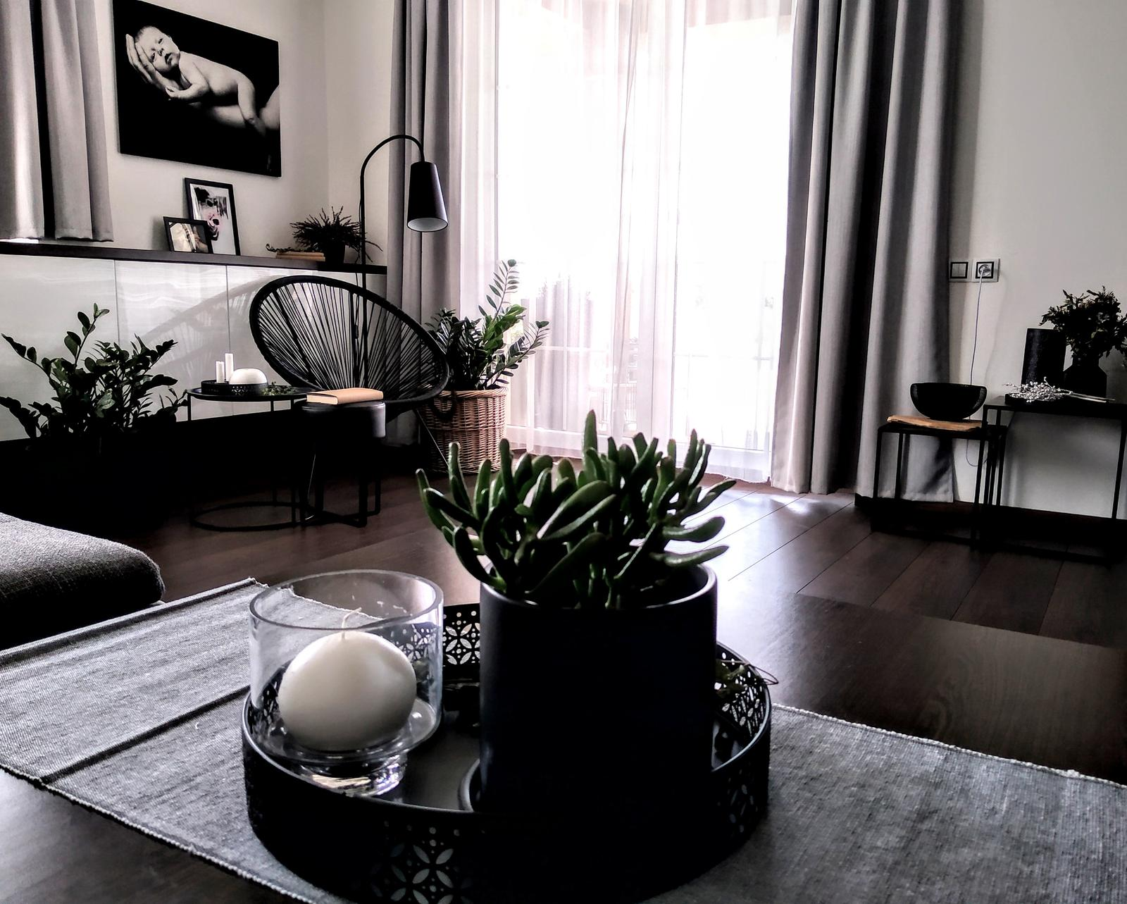 Náš obývací pokoj - Obrázek č. 1