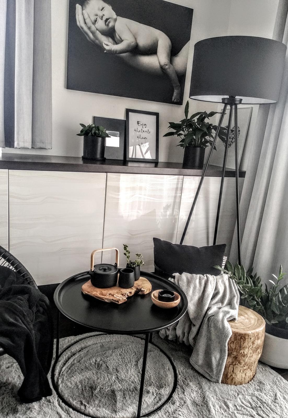 Náš obývací pokoj - Obrázek č. 228