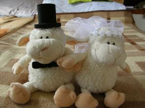 Naše ovečky na autíčko