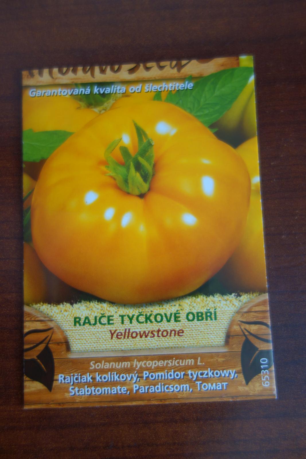 paradajka zlta, obria - Obrázok č. 3