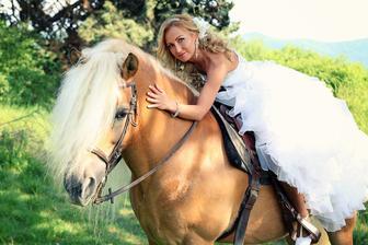 svadobné foto s koňmi..