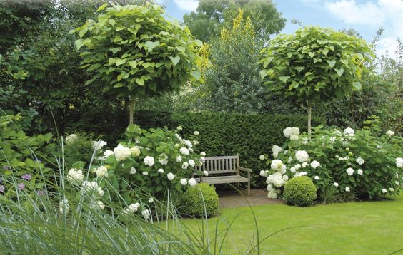 Moja buduca bielo zelena zahrada - Obrázek č. 1