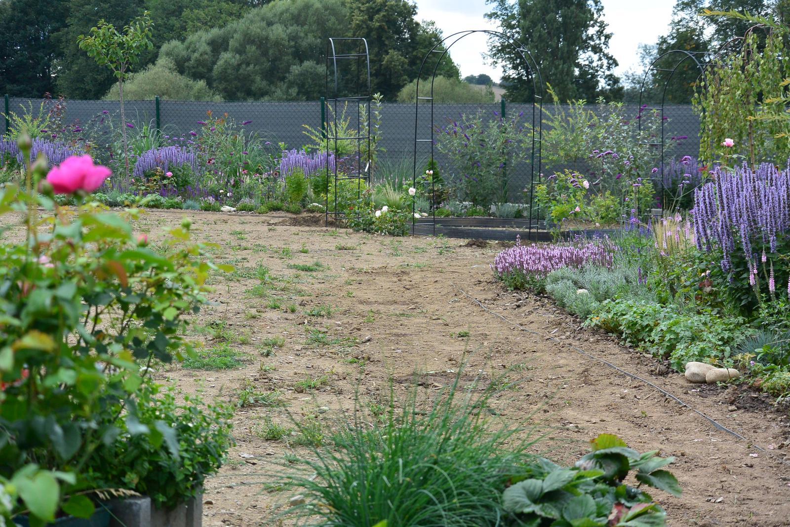 Motýlí zahrada 2019-2020 - Ještě hodně práce před námi.....
