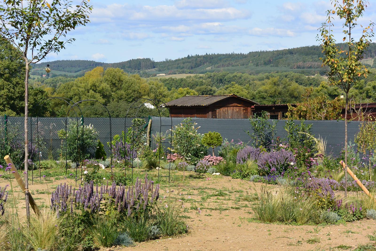 Motýlí zahrada 2019-2020 - Muchovníky- dva stromy do naší zahrádky.