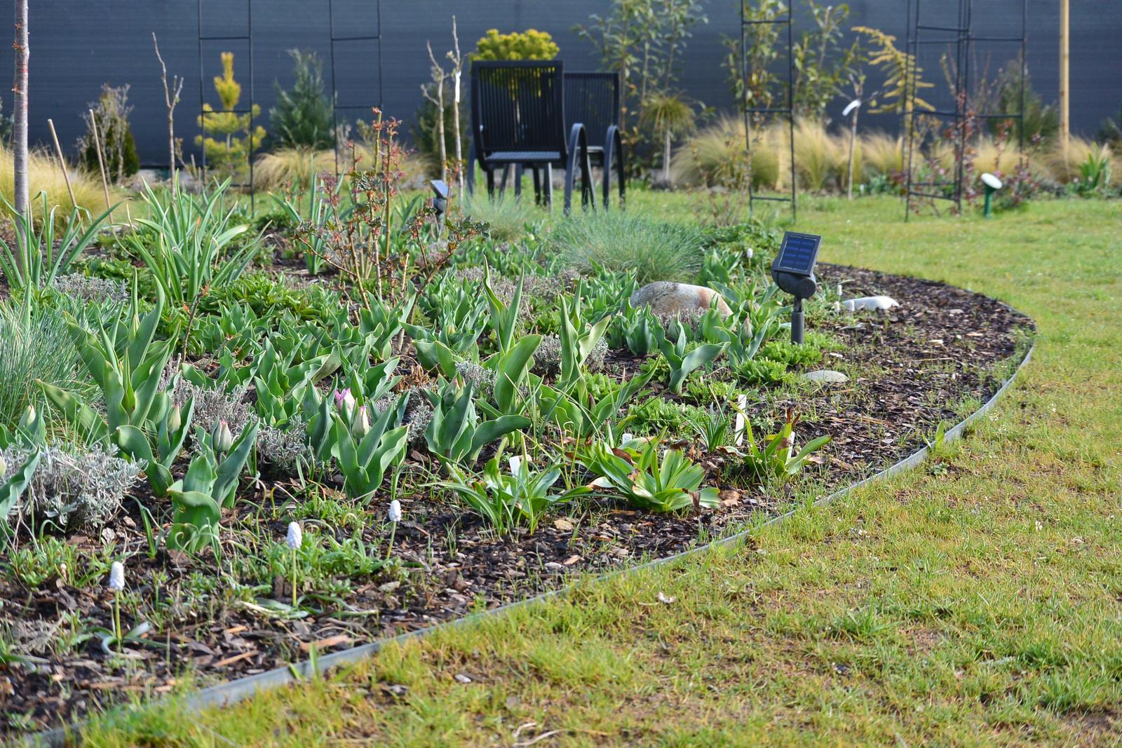 Motýlí zahrada 2019-2020 - Na zahradě už se toho hodně děje.