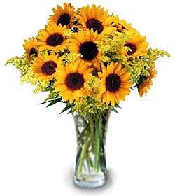 Moje najobľúbenejšie kvetinky - Obrázok č. 2