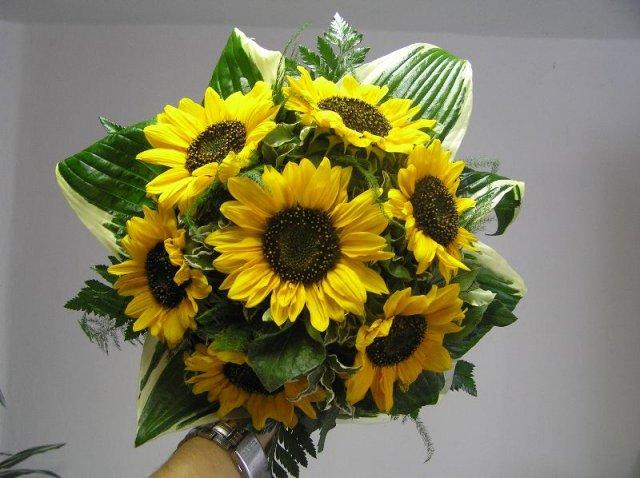 Moje najobľúbenejšie kvetinky - Obrázok č. 6
