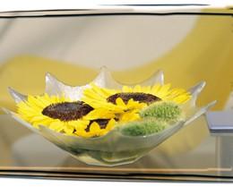 Moje najobľúbenejšie kvetinky - Obrázok č. 40
