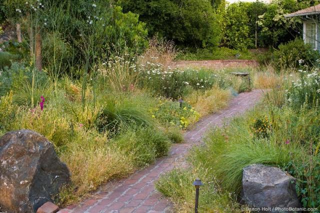 Naše představa o zahradě - Obrázek č. 12