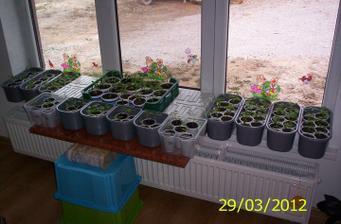 Jar v obývačke :)
