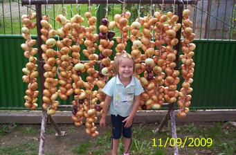 moja prvá úroda rok 2009,neodolala som,víťazné foto Záhradkár november 2009