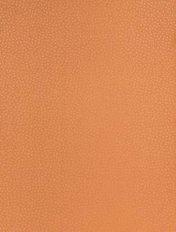Predstava o byvani - farba terakota