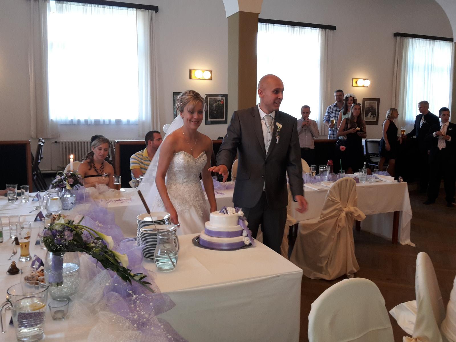 Svatební páry - BOSÁCI - Manželé Doubravovi