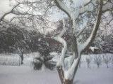 Moja krásna dulka v zimnom kabátiku