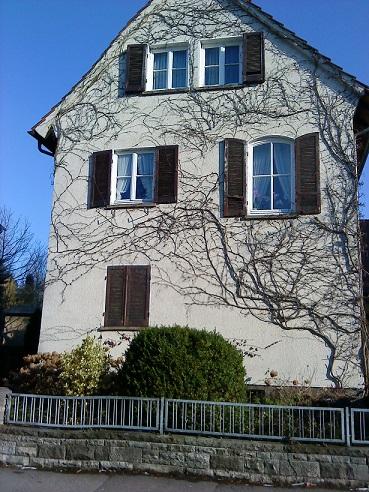 #okenice, okeničky a spol. - Obrázok č. 11