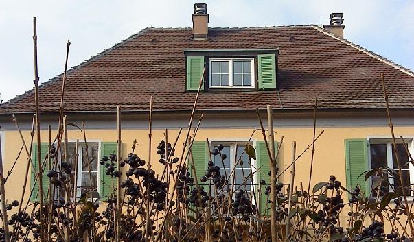 #okenice, okeničky a spol. - Obrázok č. 43