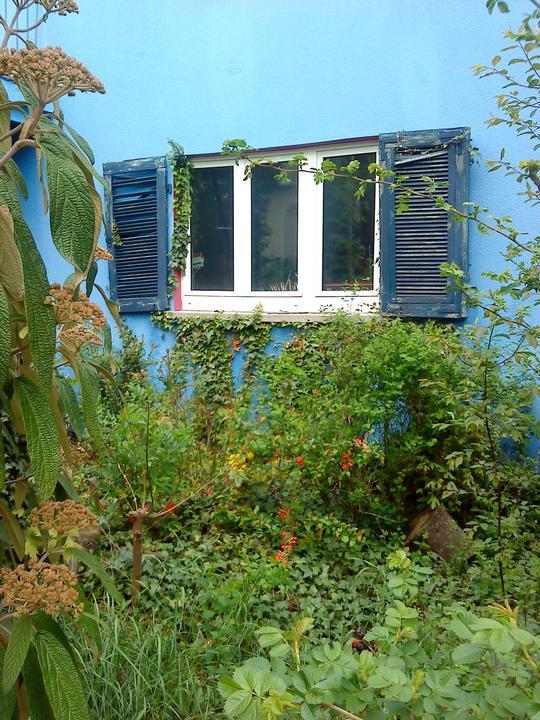#okenice, okeničky a spol. - Obrázok č. 62
