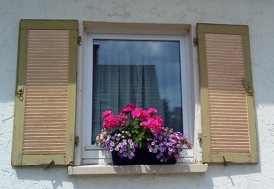 #okenice, okeničky a spol. - Obrázok č. 75