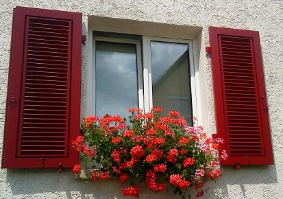 #okenice, okeničky a spol. - Obrázok č. 2