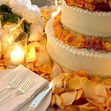 Ukázky dortů