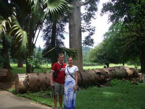 V botanické zahradě na SRÍ LANCE