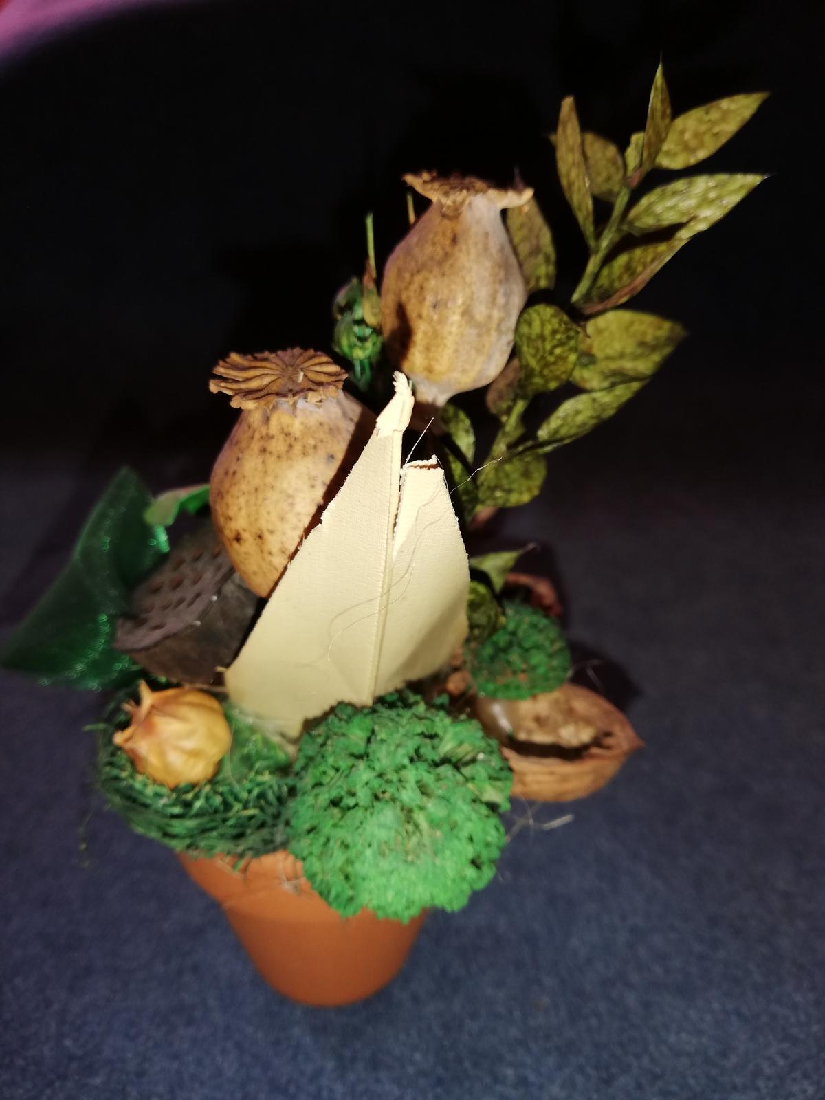 Sušené kvety - Obrázok č. 1